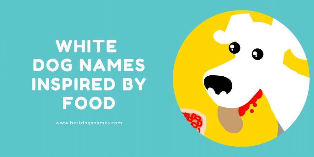 White Dog Names Inspired By Food