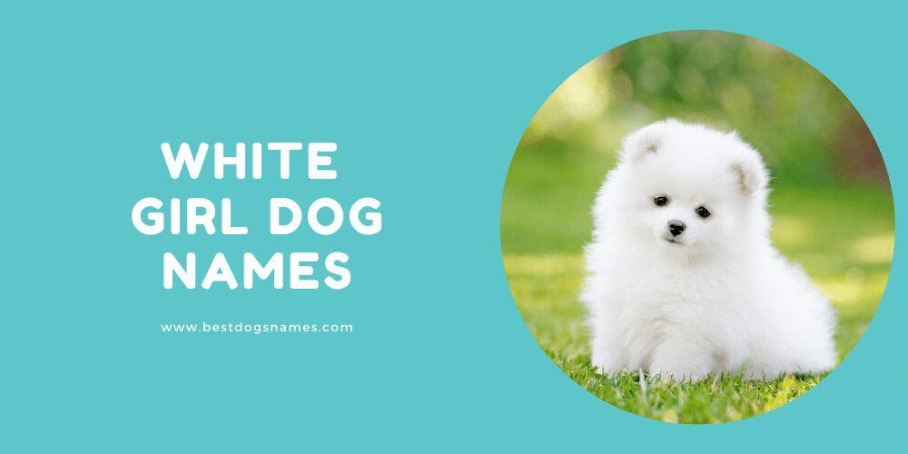 White Girl Dog Names