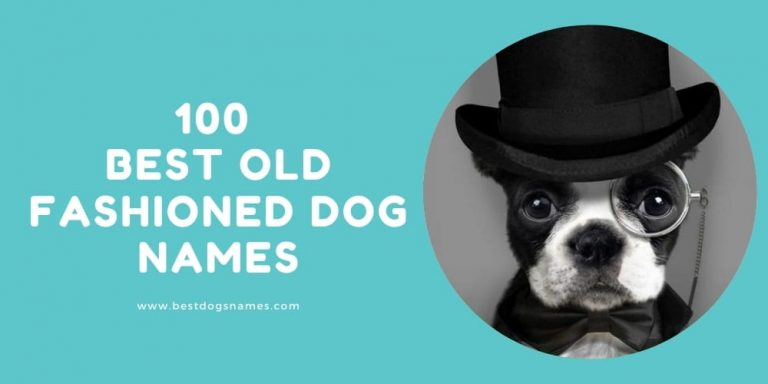 Best Old Fashioned Dog Names