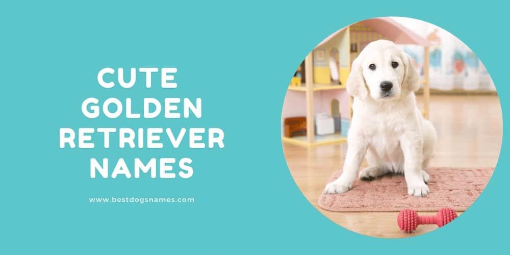Cute Golden Retriever Names