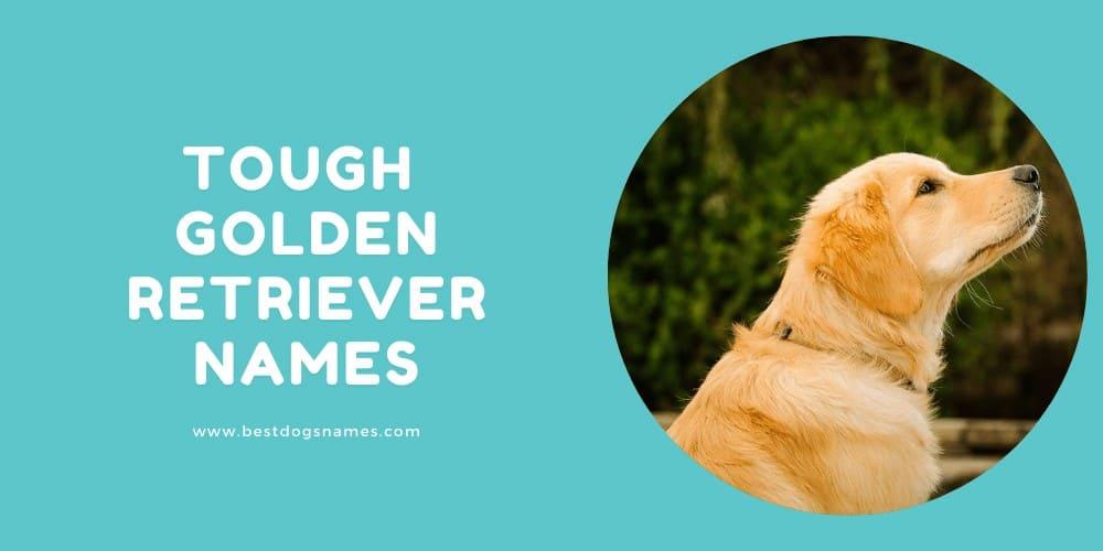 Tough Golden Retriever Names